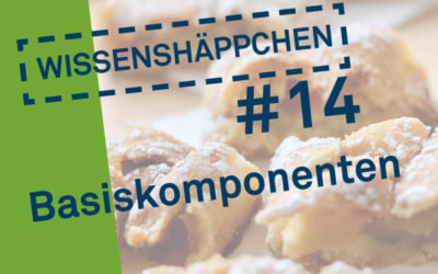 Wissenshäppchen #14: Basiskomponenten