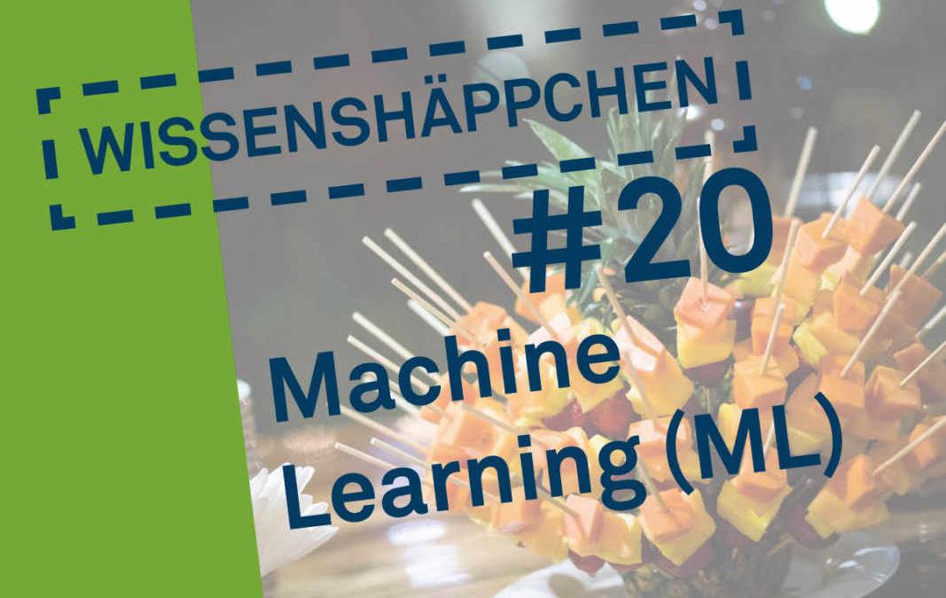 Wissenshäppchen #20: Machine Learning (ML)