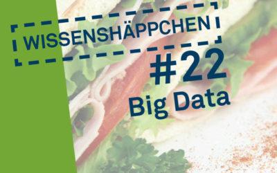 Wissenshäppchen #22: Big Data